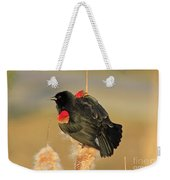 Wings In A Golden Light 2 Weekender Tote Bag