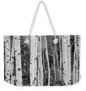 Winter Approaches Weekender Tote Bag