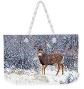 Winter Buck Weekender Tote Bag by Darren  White