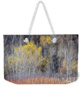 Winter Forest Landscape With Bare Trees Weekender Tote Bag