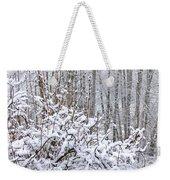 Winter Haven 2 Weekender Tote Bag