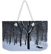 Winter In The Park Weekender Tote Bag