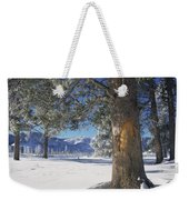 Winter In Yellowstone National Park Weekender Tote Bag