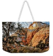 Winter Morning In Zion Weekender Tote Bag