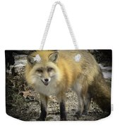 Winter Nature At Howell Nature Center Weekender Tote Bag