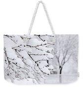 Winter Park Under Heavy Snow Weekender Tote Bag by Elena Elisseeva