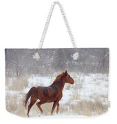 Winter Proud Weekender Tote Bag by Mike  Dawson
