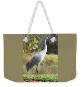 Winter Sandhill Crane Weekender Tote Bag