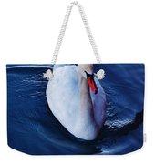 Winter Spin... Swan Style Weekender Tote Bag