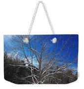 Winter Tree On Sky Weekender Tote Bag
