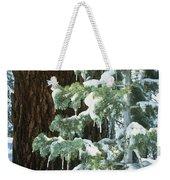 Winter Tree Sierra Nevada Mts Ca Usa Weekender Tote Bag
