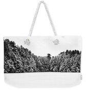 Winter Trees Mink Brook Hanover Nh Weekender Tote Bag by Edward Fielding