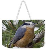 Winter Visitor - Red Breasted Nuthatch Weekender Tote Bag