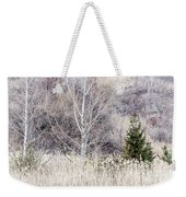 Winter Woodland With Subdued Colors Weekender Tote Bag