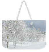 Winter's Glory - Grand Tetons Weekender Tote Bag by Sandra Bronstein