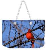Winter's Red Beauty 5 Weekender Tote Bag