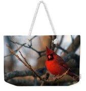Northern Cardinal Red Beauty  Weekender Tote Bag