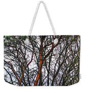 Winters Trees  Weekender Tote Bag