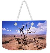 Withered Tree Paria Canyon Weekender Tote Bag