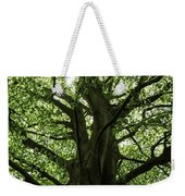 Witness Tree Weekender Tote Bag