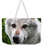 Wolf Alpha Male Weekender Tote Bag