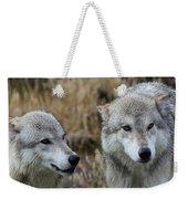 Wolf Glare II Weekender Tote Bag