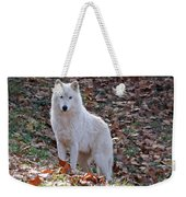 Wolf In Autumn Weekender Tote Bag