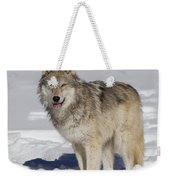 Wolf In Snow Weekender Tote Bag