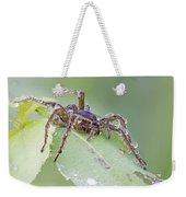 Wolf Spider In Dew  Weekender Tote Bag