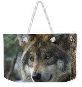 Wolf Upclose Weekender Tote Bag