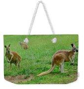 Wonderful Wallabies Weekender Tote Bag
