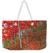 Wonders Of Autumn  Weekender Tote Bag