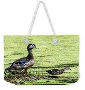 Wood Duck And Baby Weekender Tote Bag