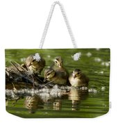 Wood Duck Babies Weekender Tote Bag