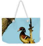 Wood Duck Drake In Tree Weekender Tote Bag