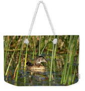 Wood Duck Drake Weekender Tote Bag