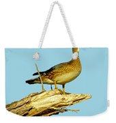Wood Duck Hen In Tree Weekender Tote Bag