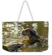 Wood Duck Hen Preening Weekender Tote Bag
