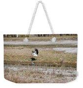 Wood Stork And Herons Weekender Tote Bag