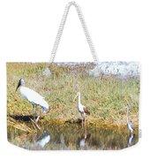 Wood Stork And Ibis And Heron Weekender Tote Bag