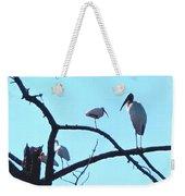 Wood Stork And Ibis Weekender Tote Bag