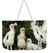 Wood Stork Young In Nest Weekender Tote Bag