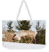 Woodland Caribou Weekender Tote Bag