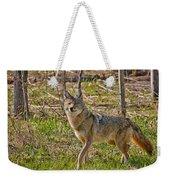 Woodland Coyote Weekender Tote Bag