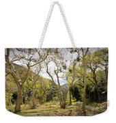 Woodland Glen In The California Vallecito Mountains Weekender Tote Bag