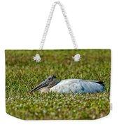 Woodstork Lazing In The Park Weekender Tote Bag