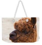 Woolly Alpaca Weekender Tote Bag