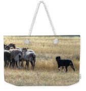 Working Sheep Weekender Tote Bag