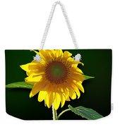 Worshipping The Sun Weekender Tote Bag