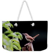 Wren - Carolina Wren - Bird Weekender Tote Bag
